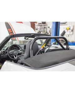 ND Hard Dog Sport roll bar